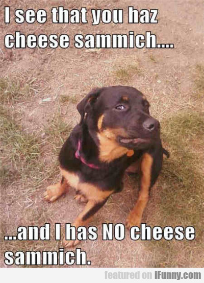 I See That You Haz Cheese Sammich...
