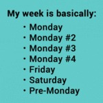 My Week Basically...