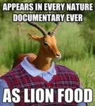 Appears In Every Nature Documentary Ever...