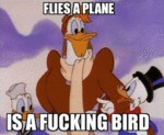 Flies A Plane, Is A Fucking Bird