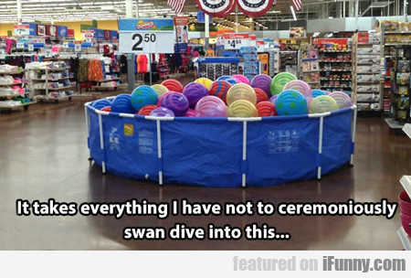 It Takes Everything I Have To Not Ceremoniously...