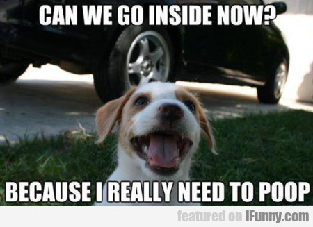 Can We Go Inside Now? Because I Really Need To...