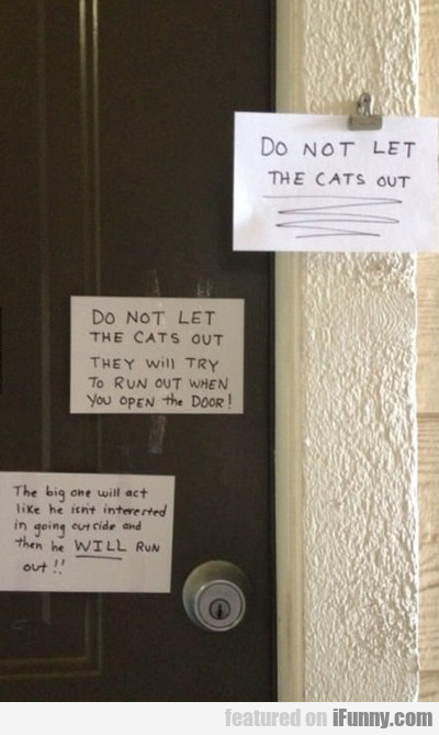 do not let the cats out...