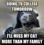 Going To College Tomorrow...