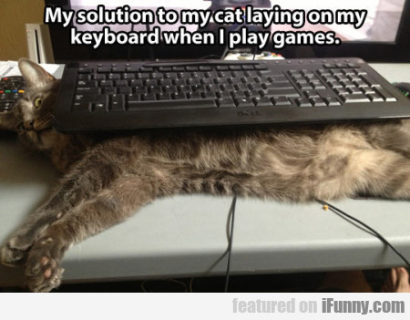 My solution to my cat laying on the keyboard...