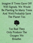 Imagine If Trees Gave Off Wifi Signals, We Would..