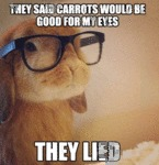 They Said Carrots Will Be Good My Eyes