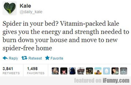 Spider In Your Bed? Vitamin Packed Kale Gives...