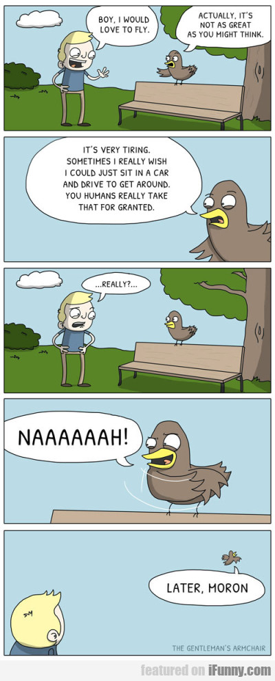 Boy I Would Love To Fly Actually It S Not Ifunny Com