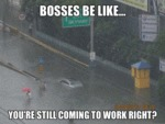 Bosses Be Like...