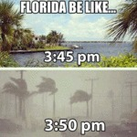 Florida Be Like...