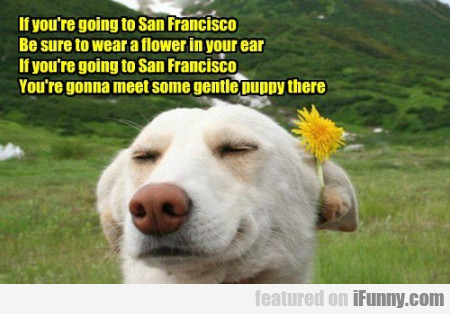 If You're Going To San Francisco, Be Sure To...