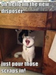 Oh Hello Im The New Disposer. Just Pour Those...
