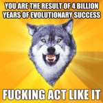 You Are The Result Of 4 Billion Years Of...