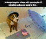 I Left My Daughter Alone With Our Dog For 10...