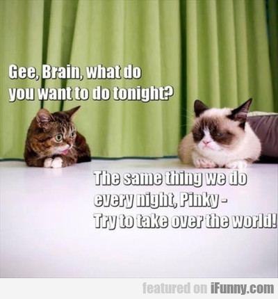 Gee, Brain, What Do You Want To Do Tonight?