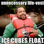 Unnecessary Life Vest, Ice Cubes Float