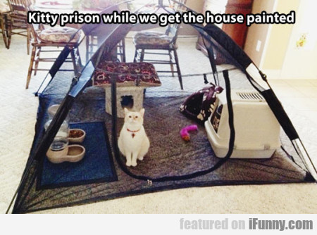Kitty Prison While We Get The House Painted