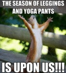 The Season Of Leggings And Yoga Pants...