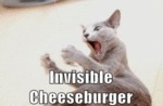 Invisible Cheesburger