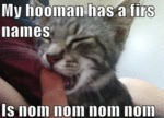 My Hooman Has A Firs Names