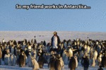 So My Friend Works In Antarctica...