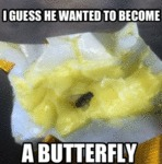 I Guess He Wanted To Become A Butterfly