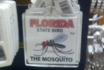 Florida State Bird: The Mosquito