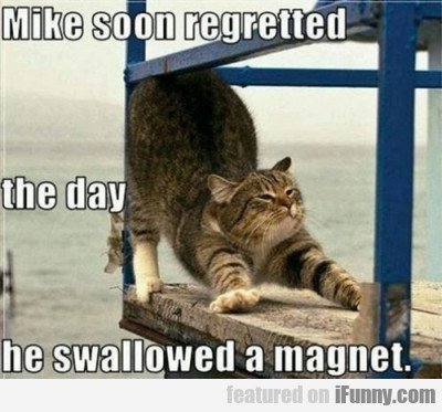 Mike Soon Regretted The Day He Swallowed A...