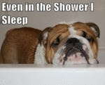 Even In Yhe Shower I Sleep
