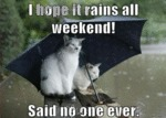 I Hope It Rains All Week-end, Said No One Ever..