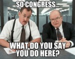 So Congress... What Do You Say You Do Here?