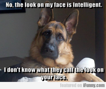 No, the look on my face is intelligent...