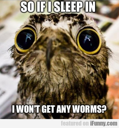 so if i sleep in, i won't get any worms?