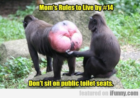 Mum's rules to live by #14