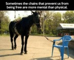 Sometimes The Chains That Prevent Us From...