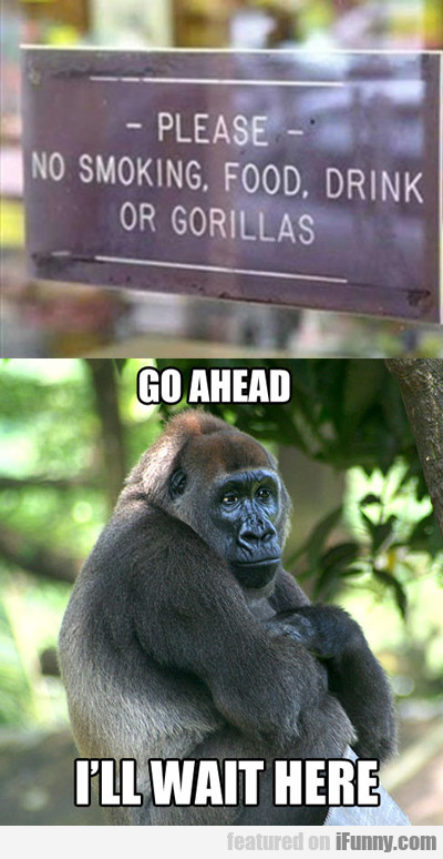 Please, No Smoking, Food, Drink Or Gorillas