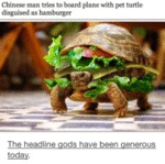 Chinese Man Tries To Board Plane With Pet Turtle..