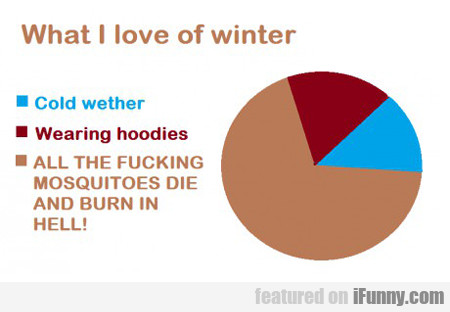 What I Love Of Winter...