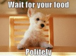 Wait For Your Food Politely