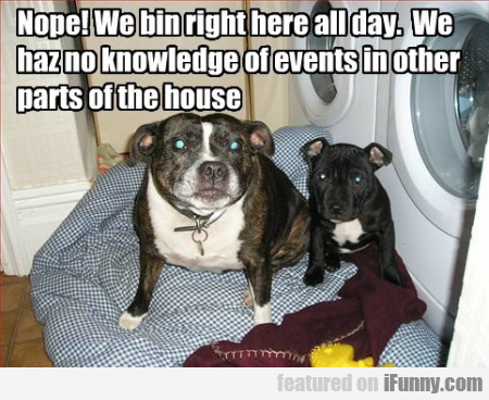 Nope! We bin right here all day. We...