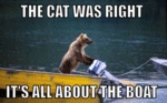 The Cat Was Right