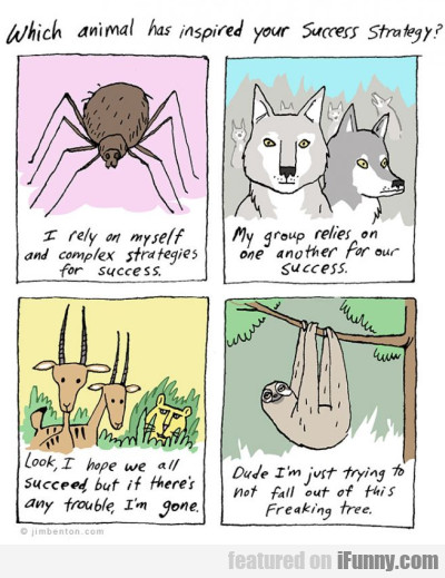 Which Animal Has Inspired Your Success Strategy?