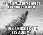 If A Tree Falls In The Woods And Nobody Hears...