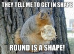 They Tell Me To Get In Shape, Round Is A Shape...