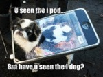 U Seen The Ipod... But Have U Seen The I Dog?