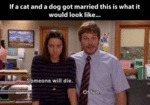 If A Cat And A Dog Got Married This Is What...
