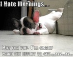 I Hate Mornings, But For You...