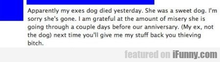 Apparently My Exes Dog Died Yesterday