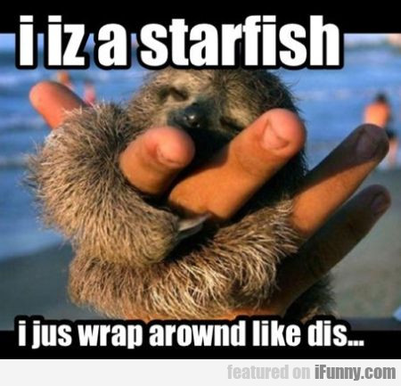 I Iz A Starfish I Just Wrap Arownd Like This